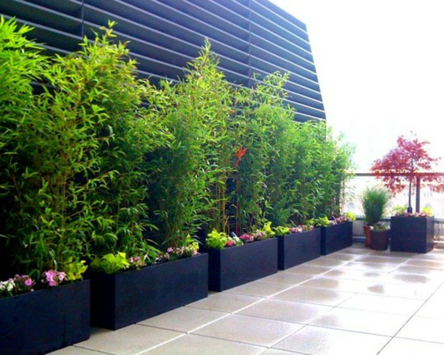 Tall Decking Planters