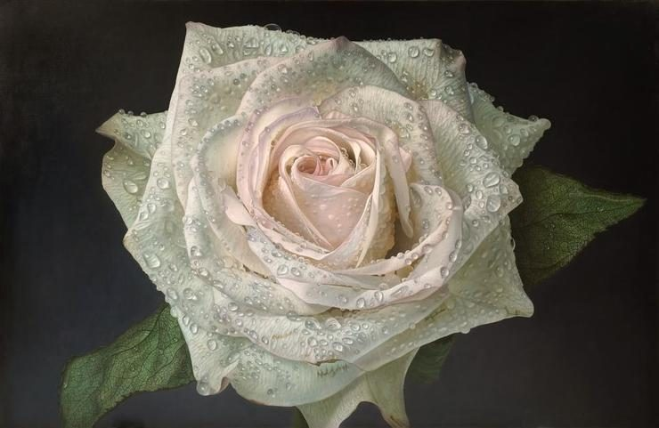Delicate Hyper-Realistic Paintings of Roses by Gioacchino ...
