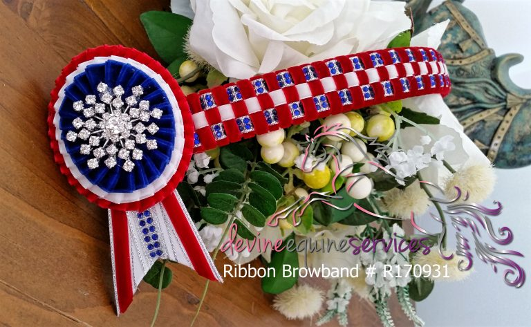 Ribbon Browband R170931