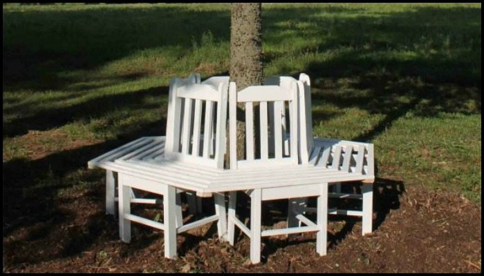 Build A Bench Around A Tree Using Kitchen Chairs Diy