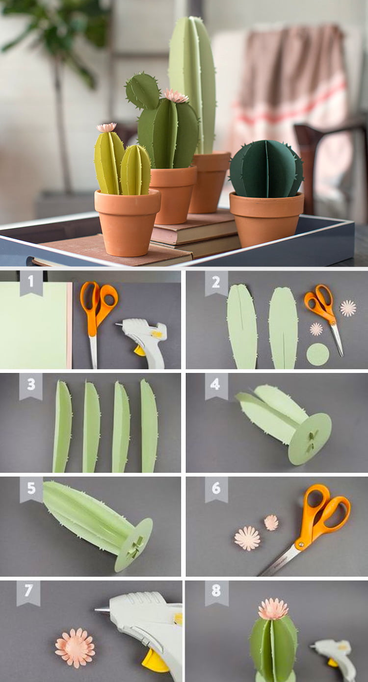 Paper cactus often apply for interior decoration