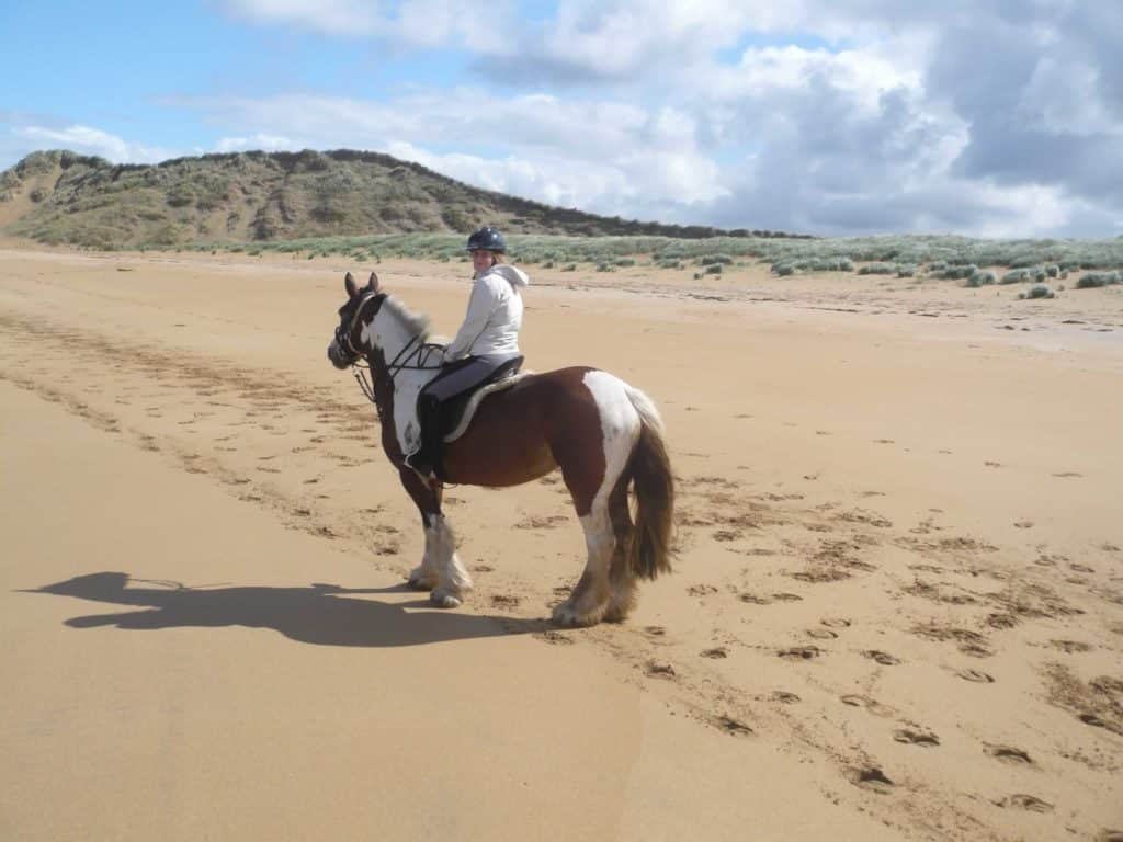 Horse Riding Lessons Learn To Ride Donegal Equestrian