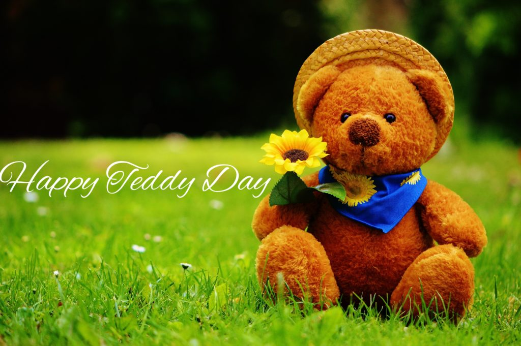 download teddy day images in hd