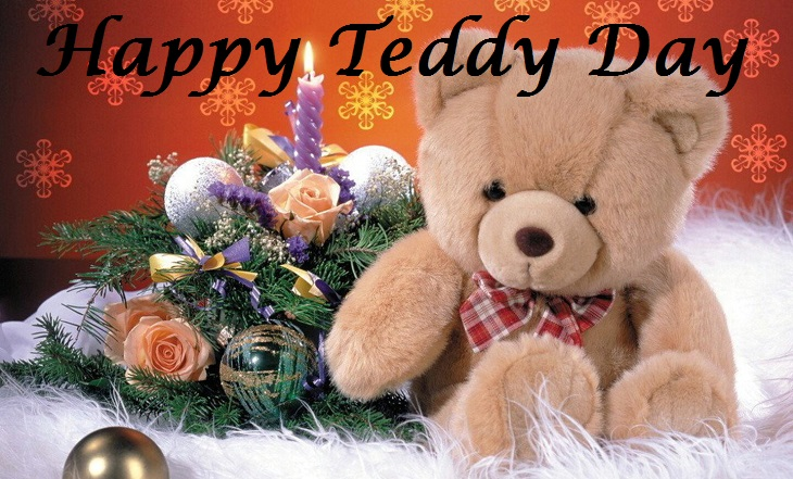 teddy image download