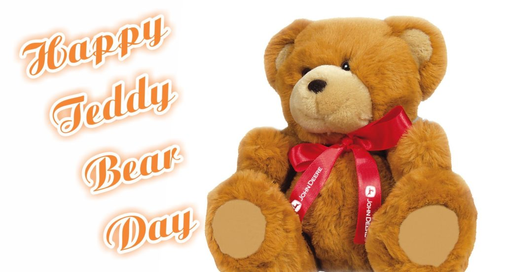 teddy's day images