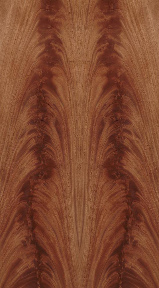 Mahogany African Wood Veneer Dooge Veneers
