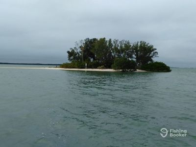 Island Breeze Boat Tours, Belleair Bluffs, FL - FishingBooker