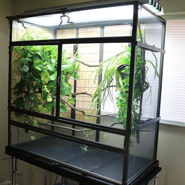 Cage Light Fixture