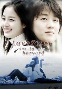 Love Story in Harvard
