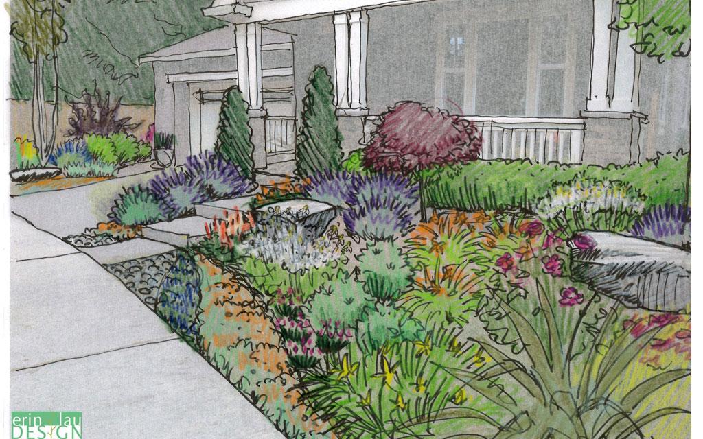 Landscape Front Sketches Yard