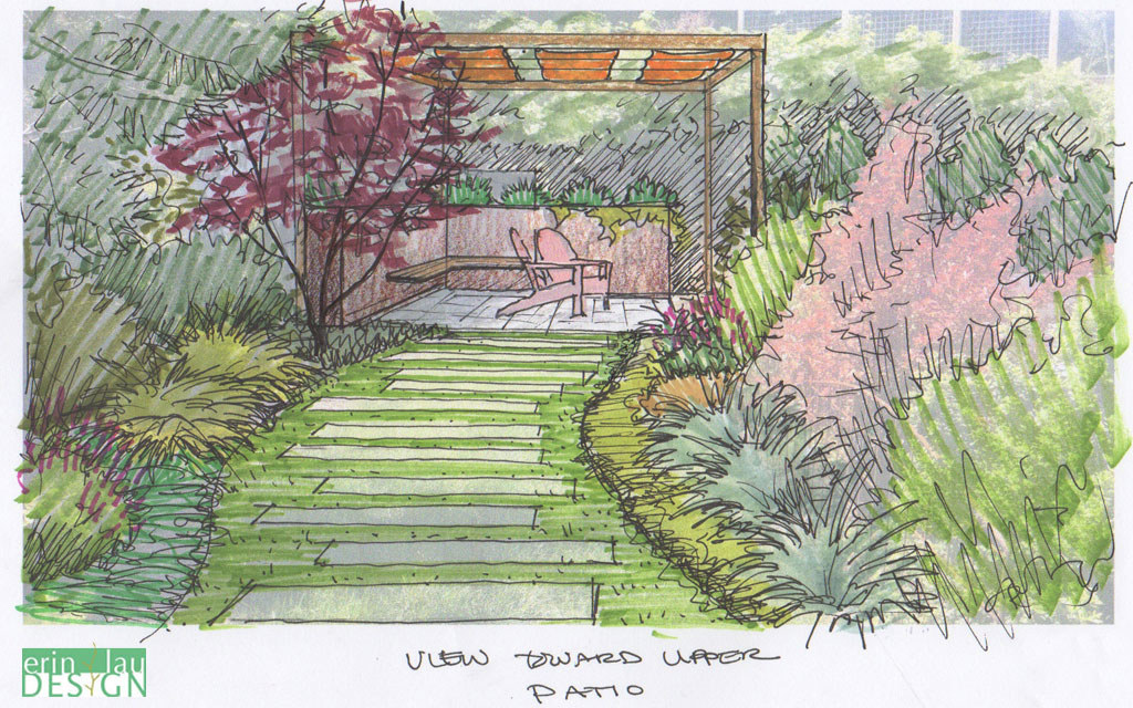 Yard Front Sketches Landscape