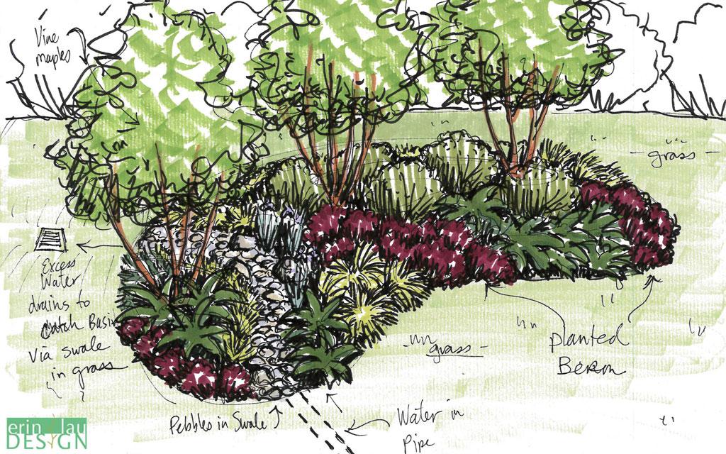 Sketches Front Yard Landscape