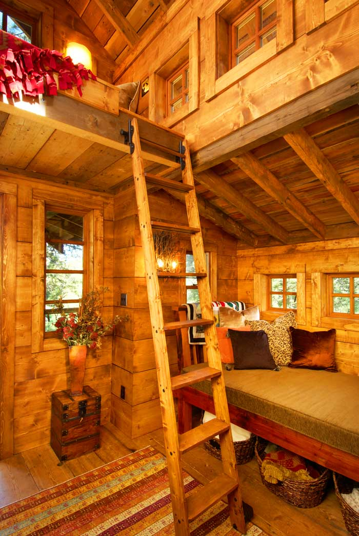 Evergreen Treehouse Drew S Home Team