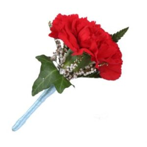 Ireland Carnation Buttonhole   Flower Delivery   Buttonhole in     Carnation Buttonhole