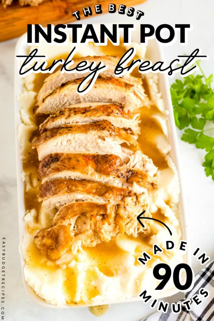Instant Pot Turkey Breast is just the easy Thanksgiving recipe that you've been searching for. The recipe will cost $18.69 to make and will serve 12 people. via @easybudgetrecipes