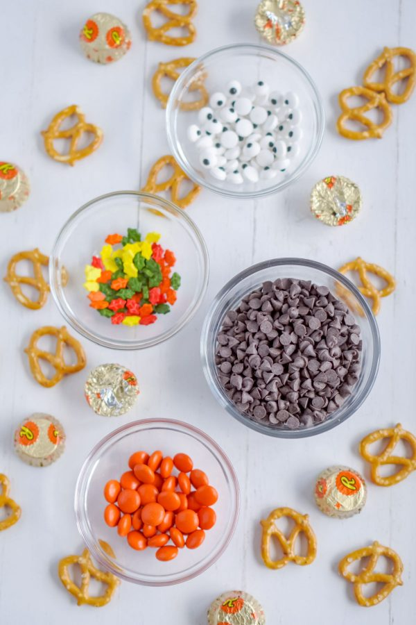 An overhead picture of all of the ingredients needed to make this Turkey Treats recipe.