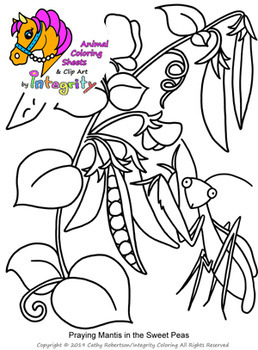 sweet pea coloring pages # 46