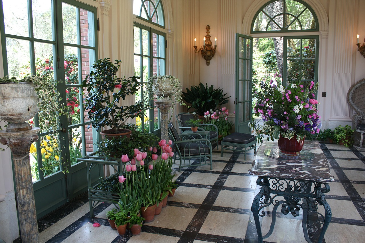 Indoor Plants Clean Air