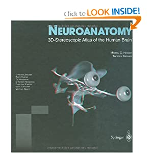 Neuroanatomy: 3D-Stereoscopic Atlas of the Human Brain ...