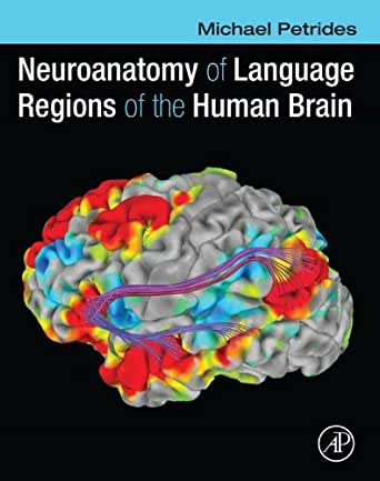 Amazon.com: Neuroanatomy of Language Regions of the Human ...