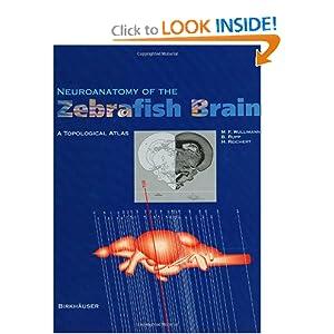 Neuroanatomy of the Zebrafish Brain: A Topological Atlas ...