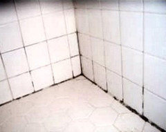 Best Way To Remove Mold And Mildew From Tile Grout - Bathtub mildew removal