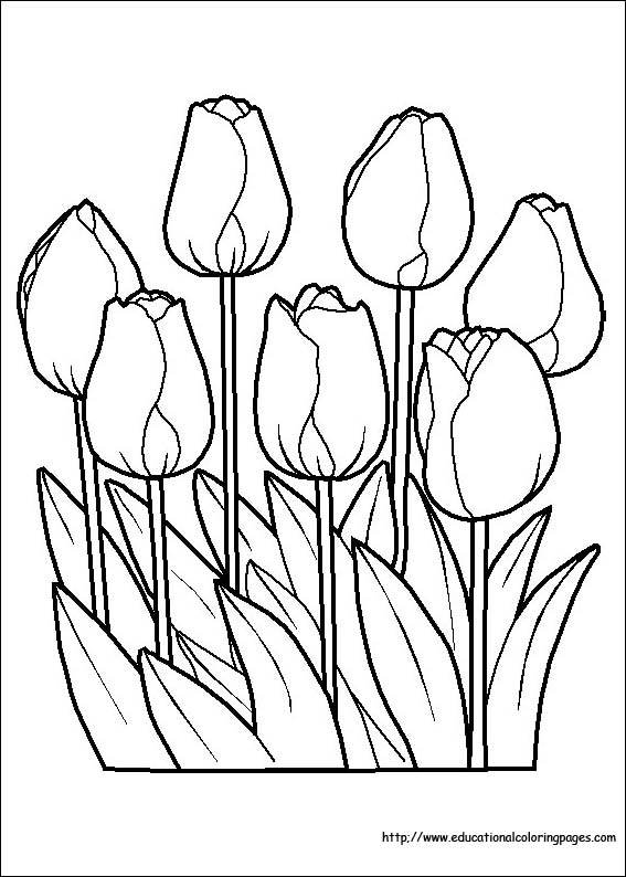printable coloring pages of flowers # 14