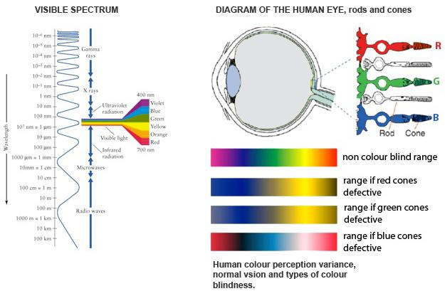 Natural Human Eye Colors