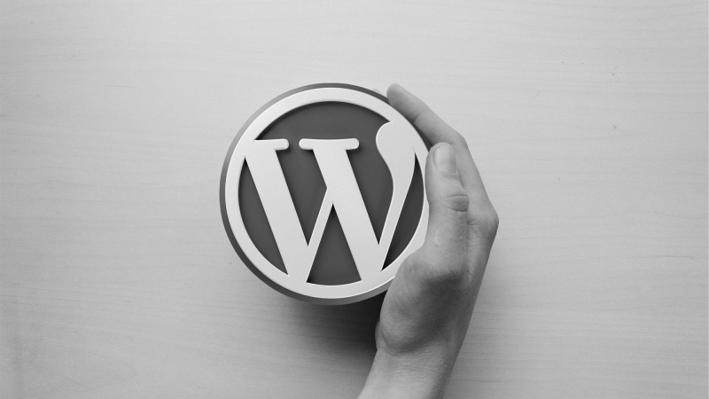 Will Install & Setup any WordPress Theme