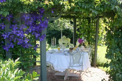 Dining Under Pergola Emily S Garden