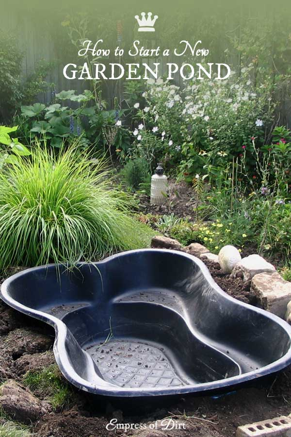 Making Fish Pond Your Garden