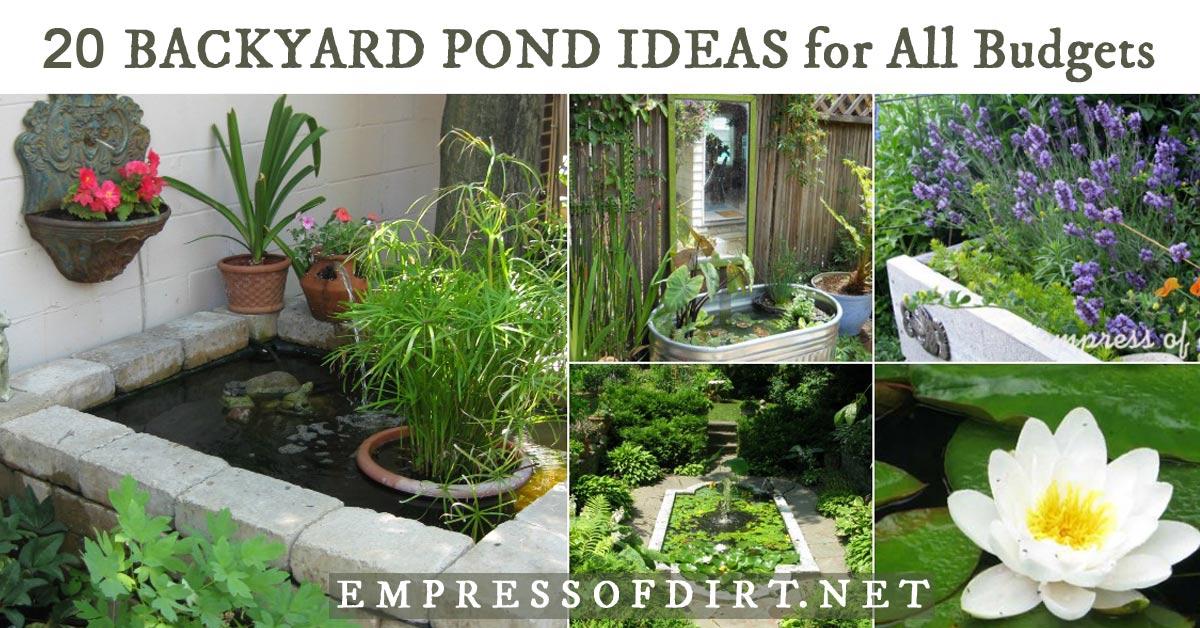 Above Ground Pond Designs