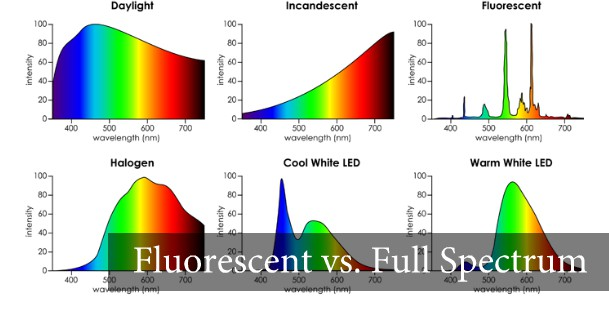 Natural Full Spectrum Light Bulbs