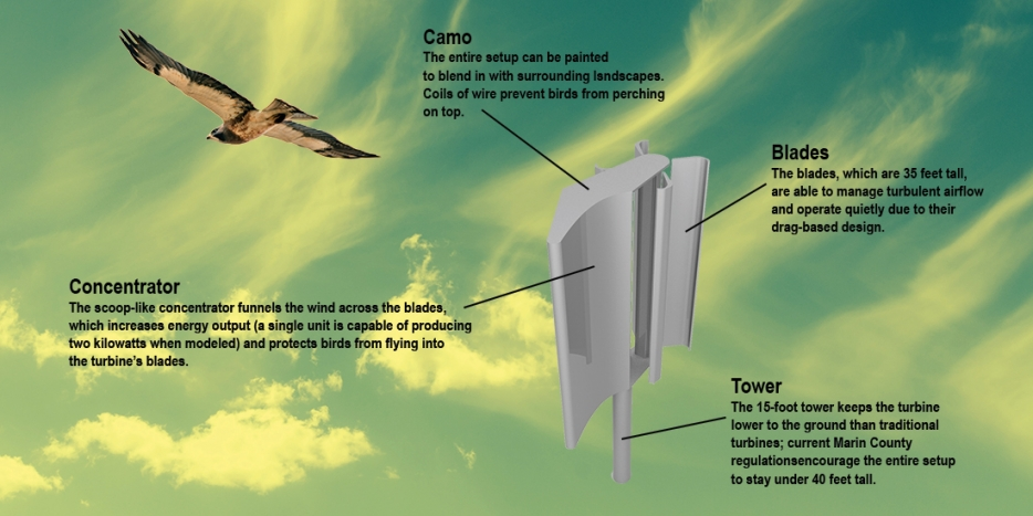 Safety And Wind Turbines Bird