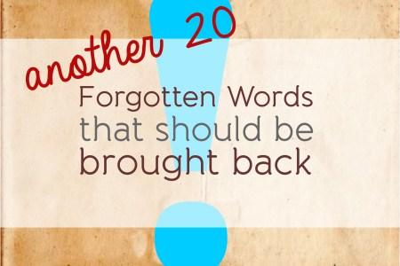 descriptive words for recommendation letters » Free Professional ...
