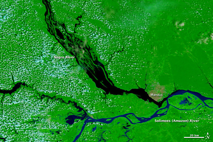 River Amazon View Satellite