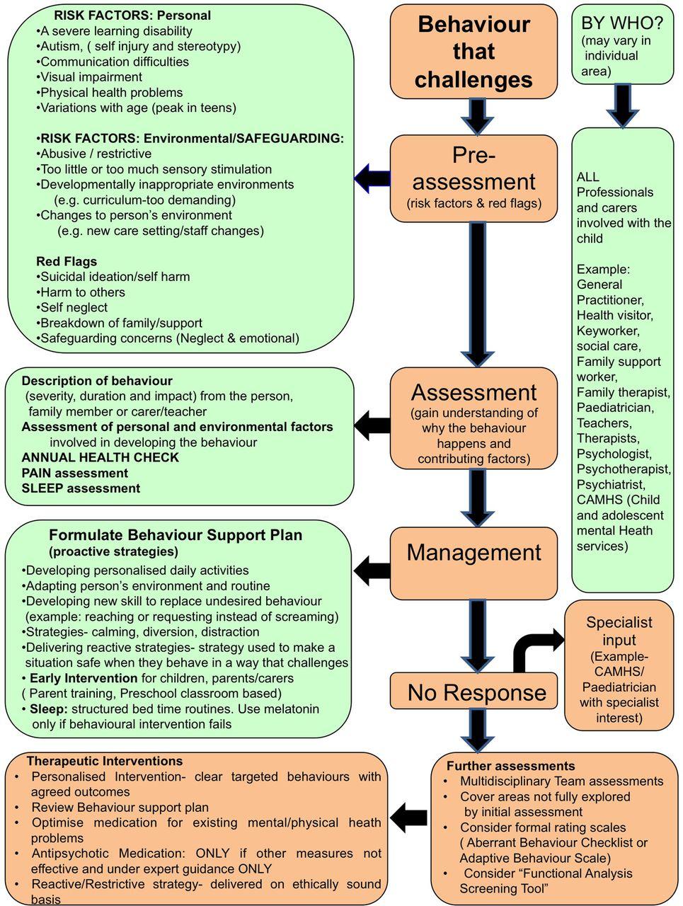 Individual Treatment Plan Example