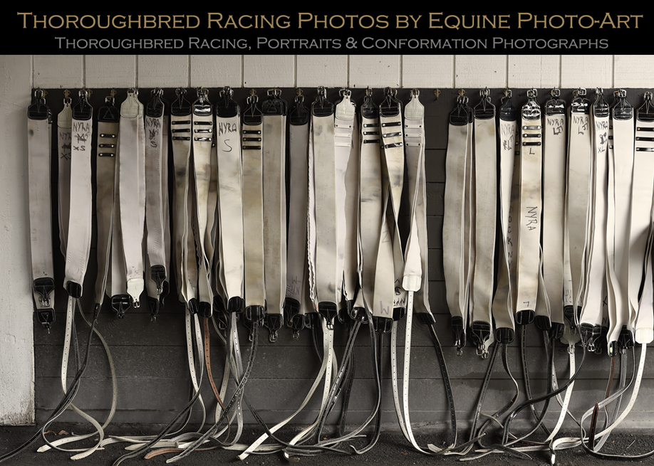 Thoroughbred Racing Photos By Equine Photo Art 2019 Page