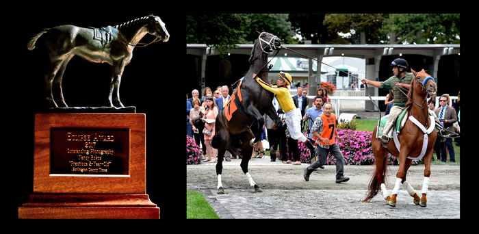 Thoroughbred Racing Photos By Equine Photo Art 2013 Page