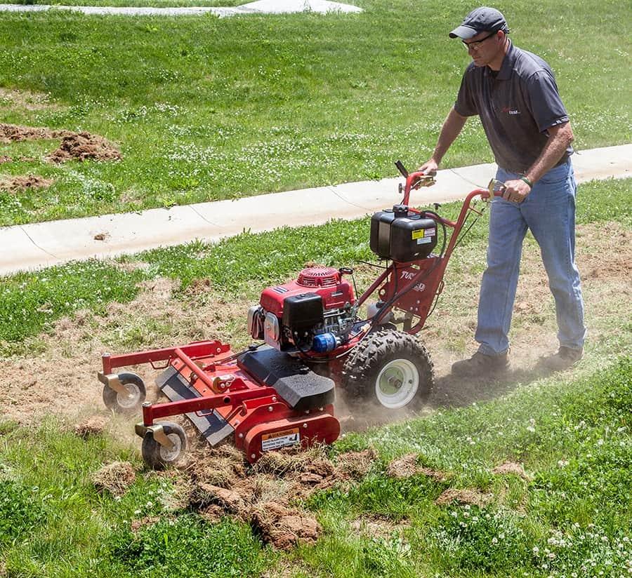 When Should I Rake My Lawn