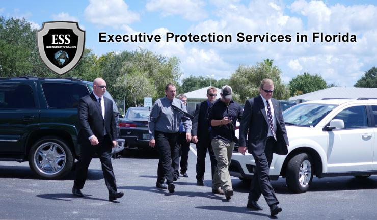 Protection Services Executive Kenya