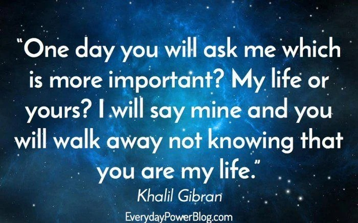 I Love You More And More Everyday Quotes