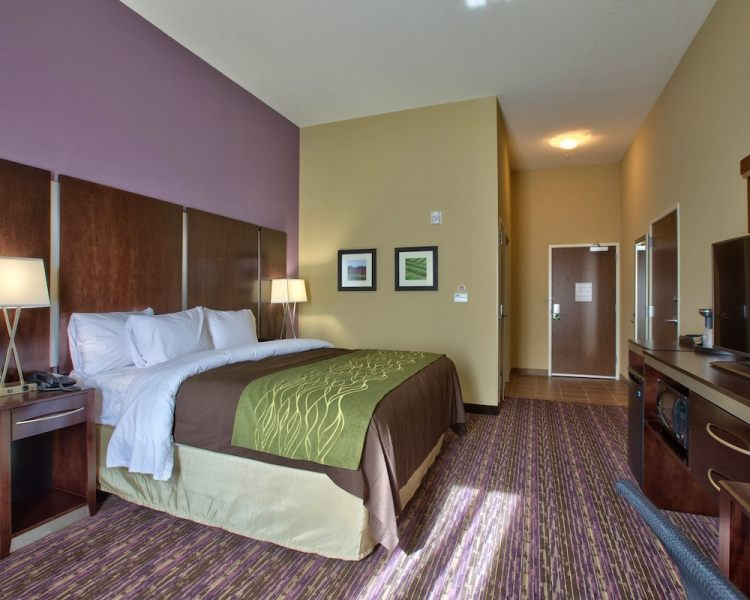 Book Comfort Inn   Suites Dothan in Dothan   Hotels com Comfort Inn   Suites Dothan  Dothan  Standard Room  1 King Bed  Non