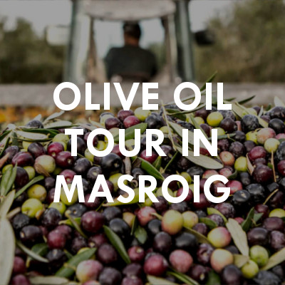 Olive oil tour in Masroig
