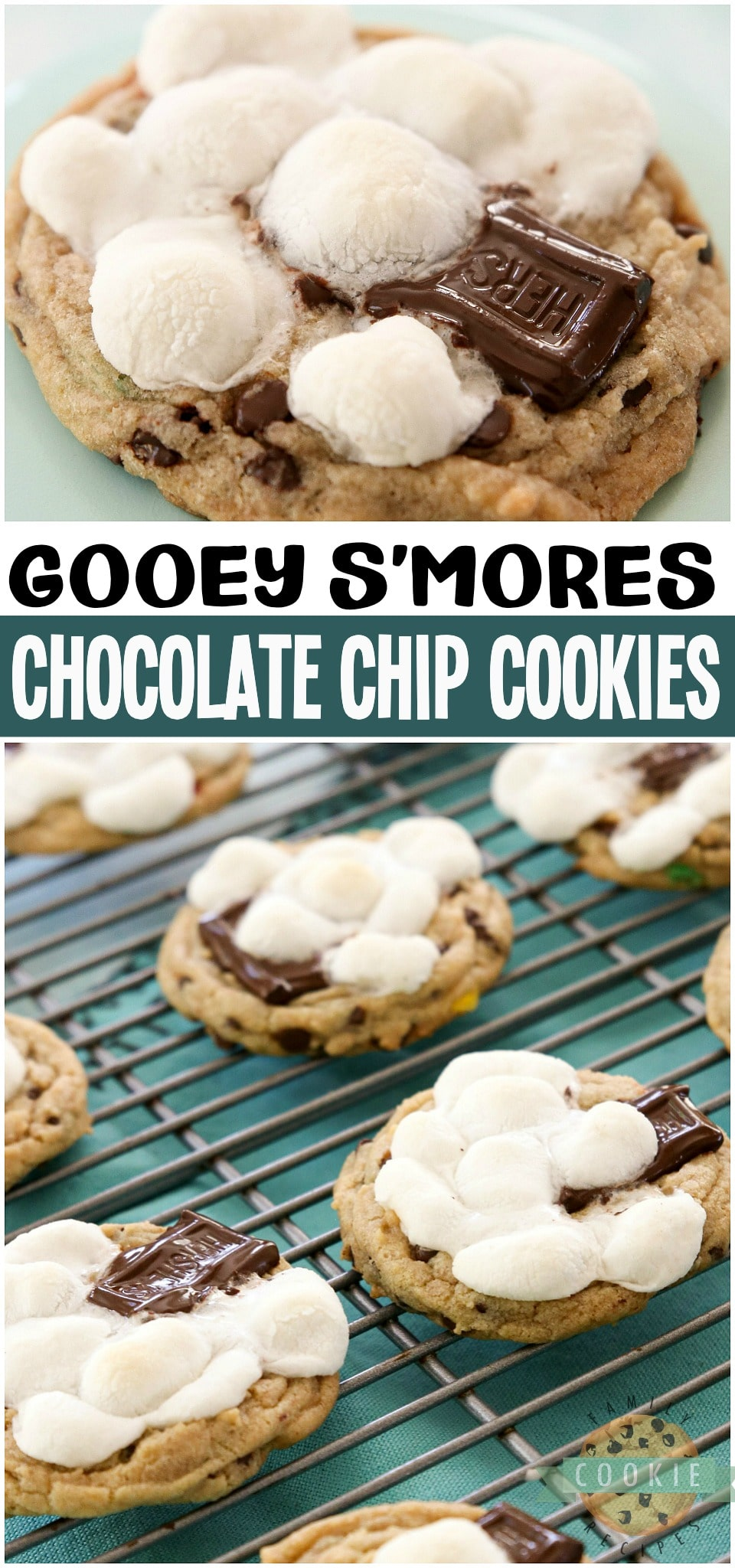 S'mores Cookies jam packed with marshmallow chocolate amazingness! Soft pudding cookies with mini chocolate chips & M&M's topped with marshmallows and a piece of chocolate. Easily the BEST S'mores Cookies EVER! #smores #cookies #chocolateship #baking #recipe from FAMILY COOKIE RECIPES via @buttergirls