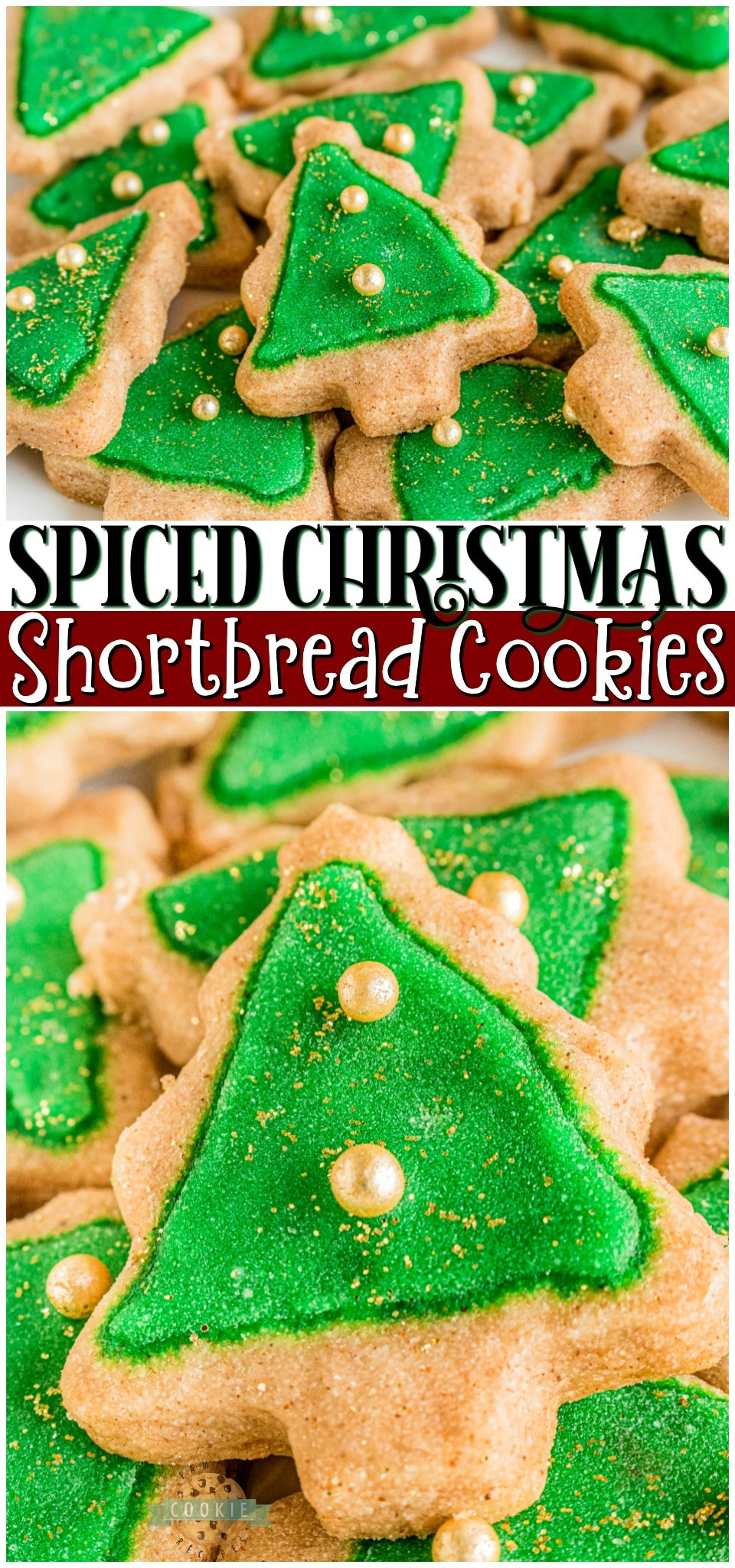 Spiced Christmas Shortbread Cookies made with cinnamon & allspice in the dough and topped with a simple icing recipe for perfect Christmas cookies! Buttery shortbread cookies with great flavor & texture for holiday baking. #Christmas #shortbread #cookies #baking #cinnamon #cookierecipe #holidaybaking from FAMILY COOKIE RECIPES via @buttergirls