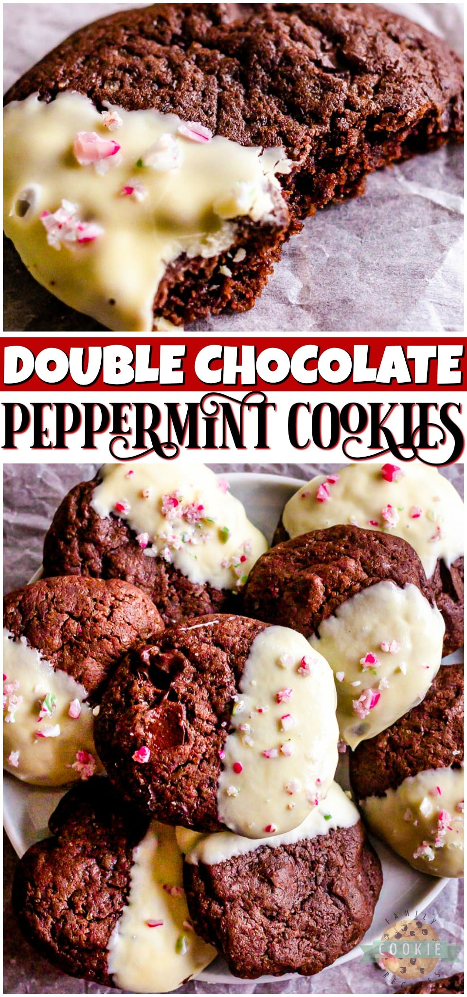 Chocolate Peppermint Cookies are a delicious double chocolate minty cookie that's dipped in white chocolate! Festive holiday cookie perfect for goodie trays!#chocolate #peppermint #baking #cookies #Christmas #easyrecipe from FAMILY COOKIE RECIPES via @familycookierecipes