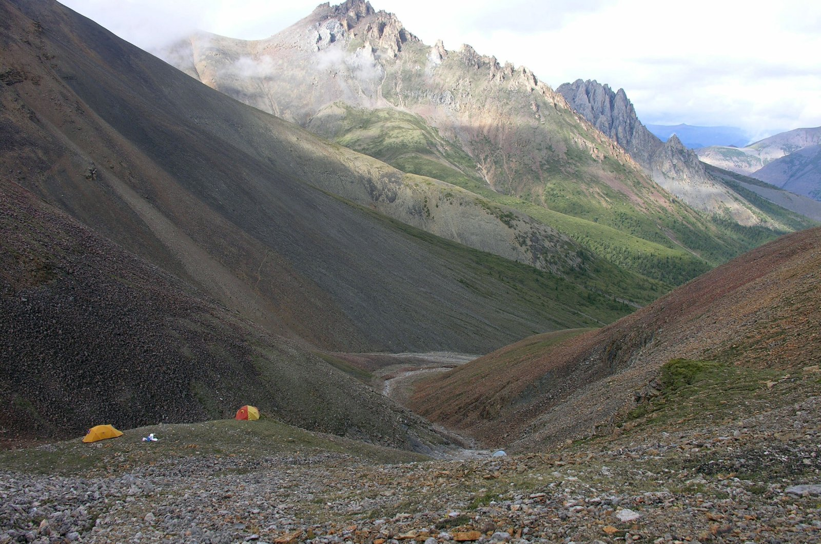 planet daily dawn northamerica animal country giving earth fossil region canada life worldlynewsonline