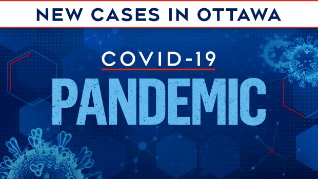 case capital canada publichealth ottawa public wellbeing report test deaths