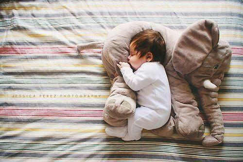 baby newborn cute cutebaby toys plush elephant elephantplushie plushie babyphotography babyelephantplush